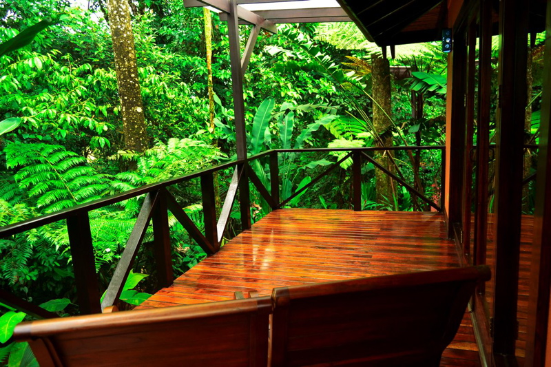 RCH Rainforest balcony