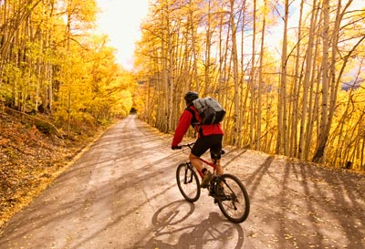 cycling through autumn forest